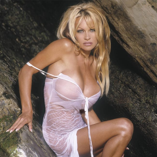 Pamela Anderson Hot Pictures photo 17