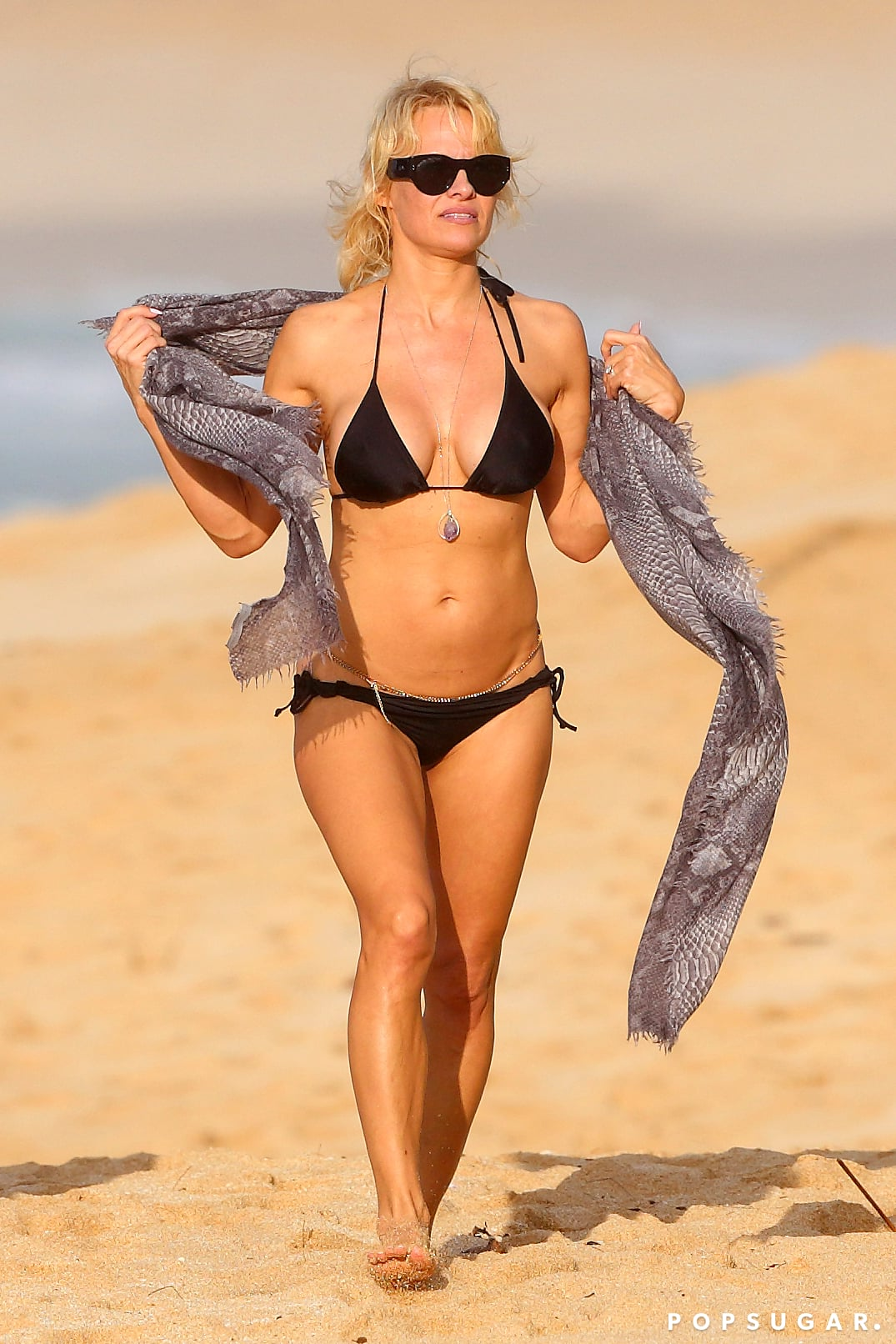 Pamela Anderson Hot Pictures photo 3