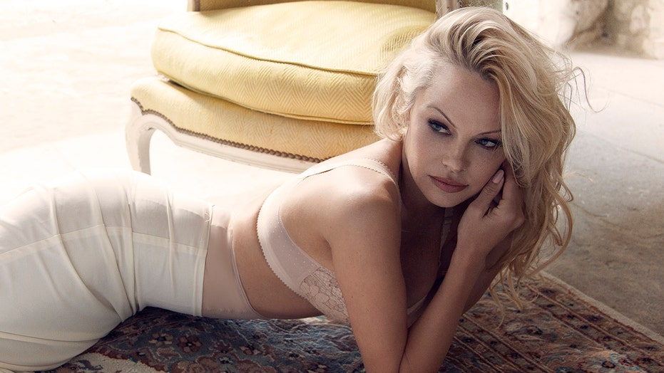 Pamela Anderson Hot Pictures photo 6