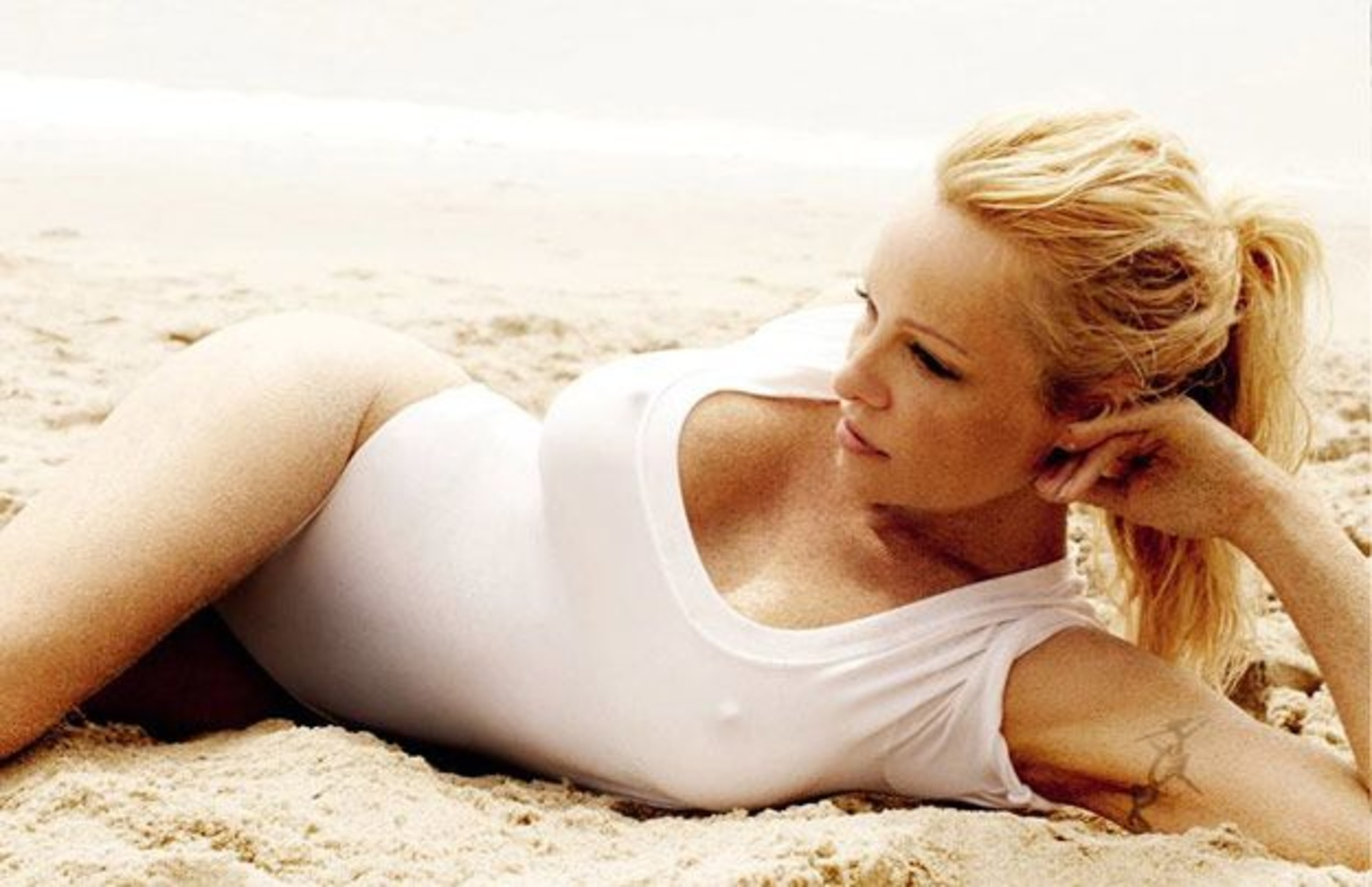 Pamela Anderson Hot Pictures photo 24