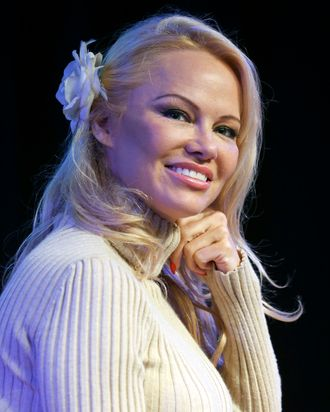 Pamela Anderson Hot Pictures photo 16