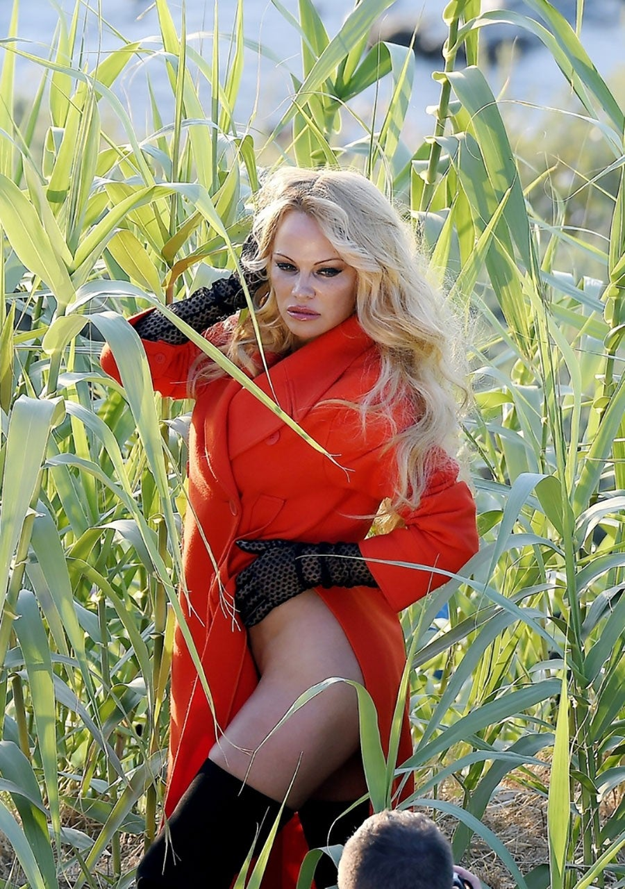 Pamela Anderson Hot Pictures photo 26