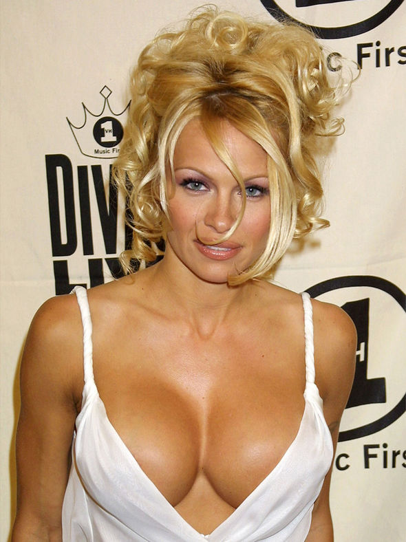 Pamela Anderson Hot Pictures photo 8